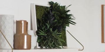 Bilder mit echten Pflanzen